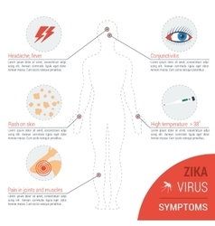 Zika virus - symptoms vector