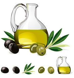 Carafe with olive oil green and black olive vector