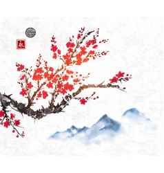 cherry sakura tree branch in blossom and far blue vector image vector image