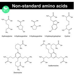 Non-standard amino acids molecular structures vector