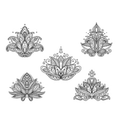 Set of persian paisley flowers vector