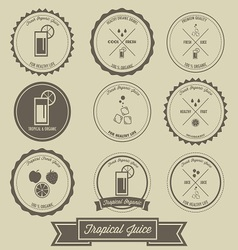 Tropical Juice Vintage Label Design vector image