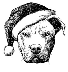 Pitbull with christmas hat vector