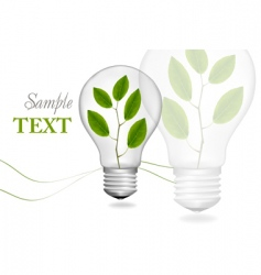 bulb with plant background vector image