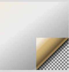 page curl with transparent curled gold corner vector image vector image