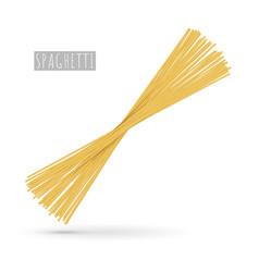 raw spaghetti pasta realistic vector image