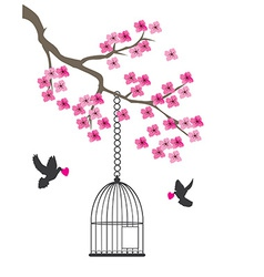 Dove and cage vector image