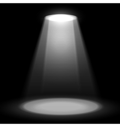 Spotlight shine effects on a dark background vector