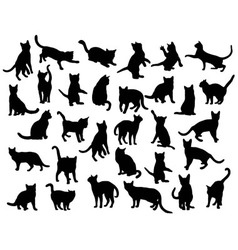 Activity cat silhouettes vector