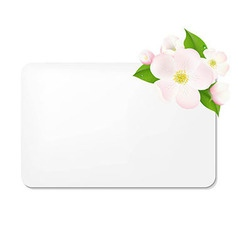 Apple tree flowers with blank gift tags vector