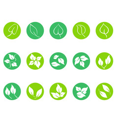 green leaf round button icons set vector image
