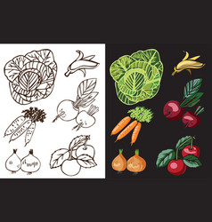 vegetables and fruits on black vector image vector image
