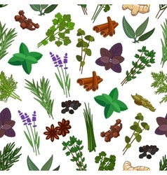 Herbs and spices seamless pattern vector