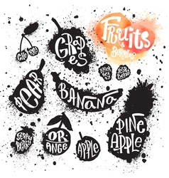 Spray paint set of ink splatter fruits and berries vector