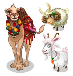 camel sheep and goat in childrens style costume vector image vector image