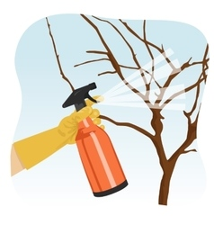 Hand spraying tree in garden with protecting spray vector