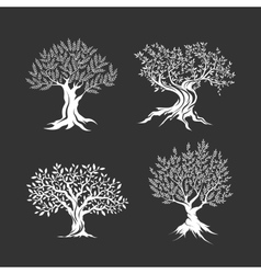 Olive trees silhouette icon set isolated vector
