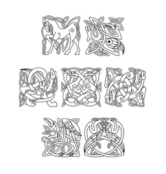 Square decorative celtic motifs of animals and vector