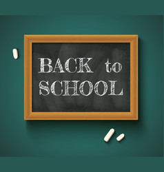 Back to school on the chalkboard vector