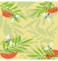Wild ash and dragonflies vector