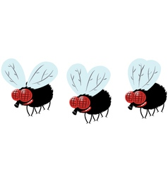 Funny fly vector
