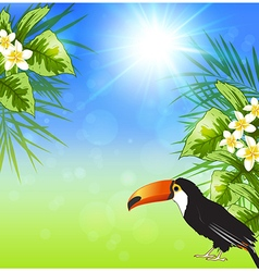 Green tropical leaves and toucan vector