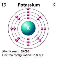 Diagram representation of the element potassium vector