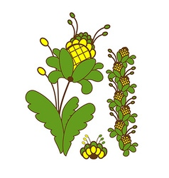 Green plant with yellow flowers vector