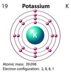 Diagram representation of the element potassium vector