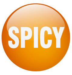 Spicy orange round gel isolated push button vector