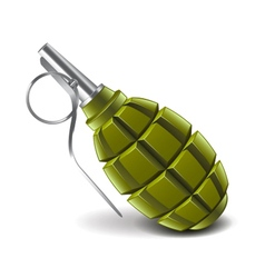 Grenade isolated on white vector image vector image