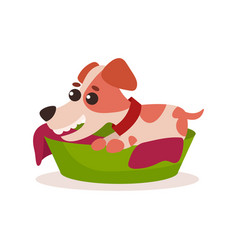 Jack russell terrier character playing in green vector