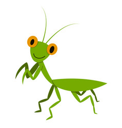 mantis mantodea grasshopper in flat style vector image vector image