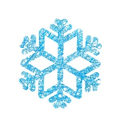 Snowflake of network snow line winter exhibit vector