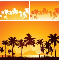 Summer sunset background with palm trees vector