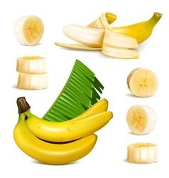 Ripe yellow banana vector image vector image