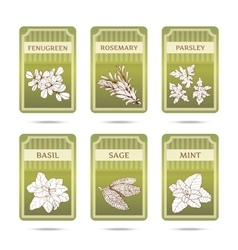 Collection of herbs labels vector