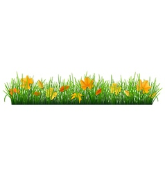 fallen leaves in grass vector image vector image