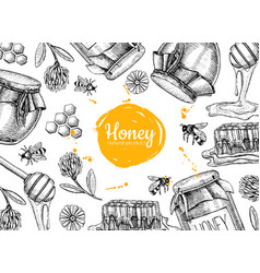 Honey hand drawn frame  jar vector