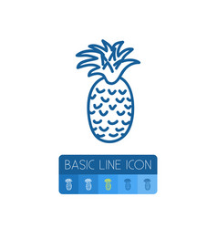 Isolated freshness outline tropical fruit vector