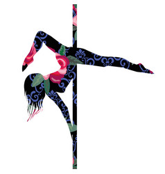 Poledance dance dancer fashion female fitness vector