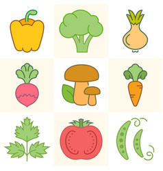 vegetables and greens set of vector image