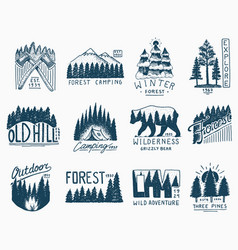 camping badges mountains coniferous forest and vector image