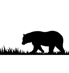 Silhouette of bear in the grass vector image