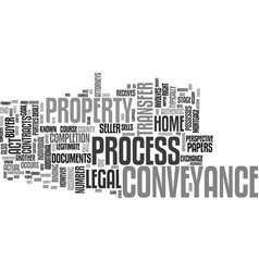 The process of conveyance text background word vector