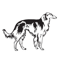 decoratie russian wolfhound vector image vector image