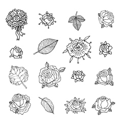 Rose set on a white background vector image vector image
