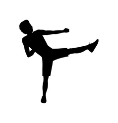 Silhouette man martial arts kick vector