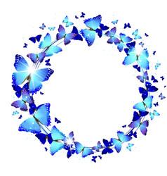 Wreath of Blue Butterflies vector image vector image