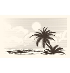 Vintage palm tree sketch vector